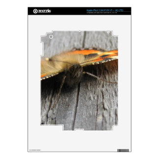 Fluffy Butterfly Macro iPad 3 Skins