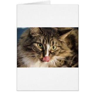 Fluffy Card