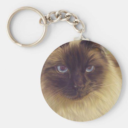 Fluffy Cat Keychain