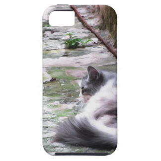 Fluffy cat sleeping crouch on the floor iPhone SE/5/5s case