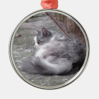 Fluffy cat sleeping crouch on the floor metal ornament