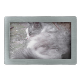 Fluffy cat sleeping crouch on the floor rectangular belt buckle