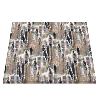Fluffy Cattails Nature Stretched Canvas Prints