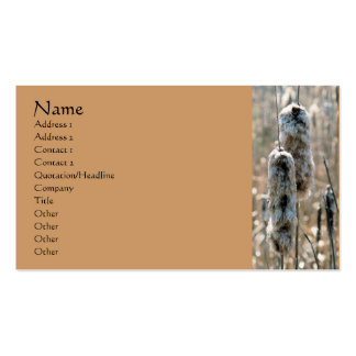 Fluffy Cattails Nature Photography Business Card