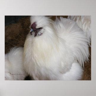 Fluffy Chicken 2 Print