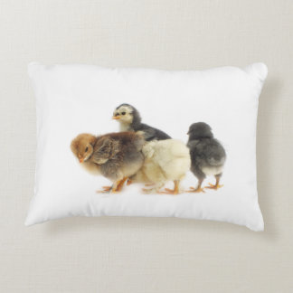 fluffy chicks accent pillow