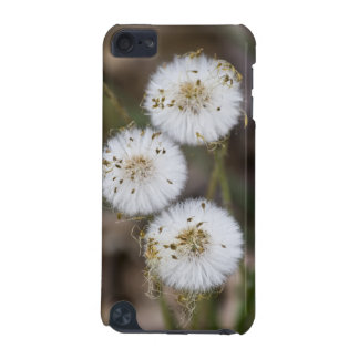 Fluffy Dandelions iPod Touch (5th Generation) Case