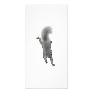 Fluffy Digitally Drawn Grey Squirrel Climbing Down Card
