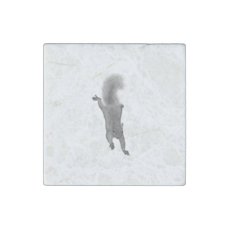 Fluffy Digitally Drawn Grey Squirrel Climbing Down Stone Magnet