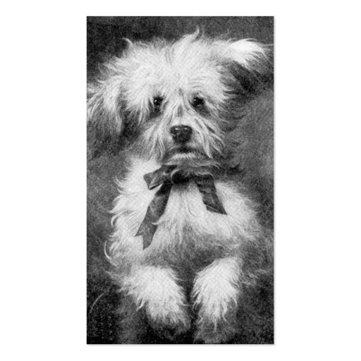 Fluffy Dog Business Card
