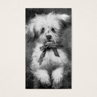 Fluffy Dog Business Card