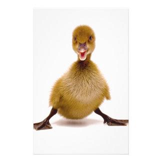 Fluffy Duck Stationery