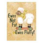 Fluffy Ewes Postcard