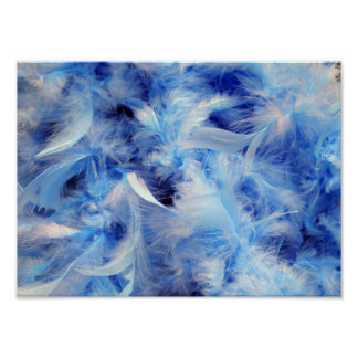 Fluffy Feathers Poster