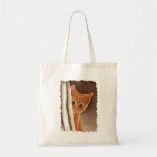 Fluffy Ginger Kitten & Curtain Bag