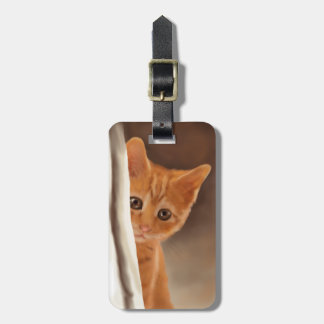 Fluffy Ginger Kitten Tag For Luggage