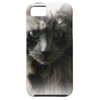 Fluffy Gray Cat eyes iphone tough case iPhone 5 Covers
