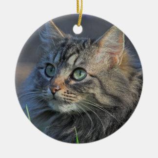 Fluffy Gray Tabby Cat Looking Upward Ceramic Ornament