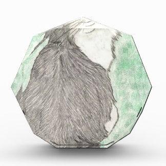 Fluffy green-eyed cat acrylic award