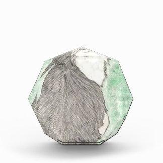 Fluffy green-eyed cat award