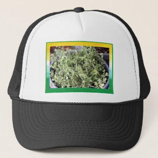 Fluffy Joy Thyme Hat