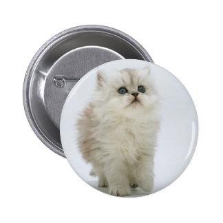 Fluffy Kitten Button