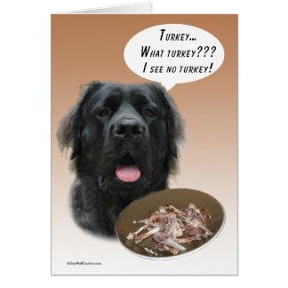Fluffy Mastiff Turkey Card