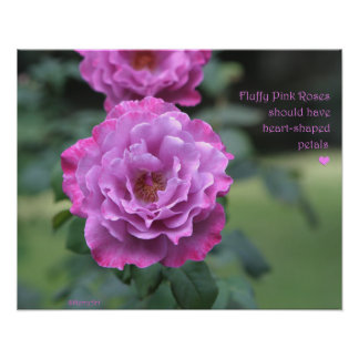 Fluffy Pink Roses Poster: ROSE & PROSE 20x16 Poster
