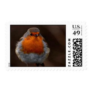 Fluffy Robin Postage