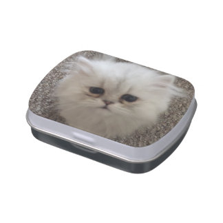 Fluffy Sasquach looking kitty with cute expression Candy Tin