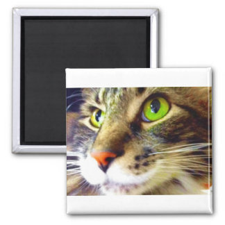Fluffy Says Hi Cute Cat Square Magnet