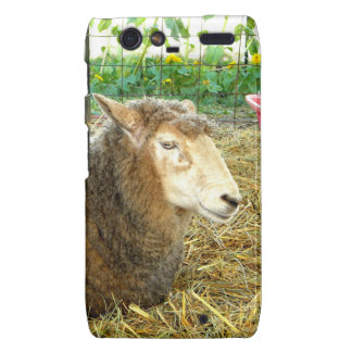 Fluffy Sheep Motorola Droid RAZR Case