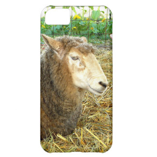 Fluffy Sheep iPhone 5C Case