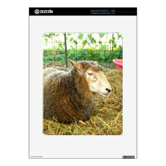 Fluffy Sheep Skin For iPad