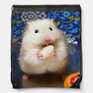 Fluffy syrian hamster Kokolinka eating a seed Drawstring Bag