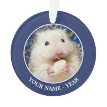 Fluffy syrian hamster Kokolinka eating a seed Ornament