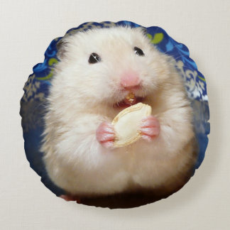 Fluffy syrian hamster Kokolinka eating a seed Round Pillow