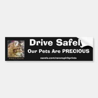 Fluffy TABBY CAT Safety Bumper Sticker Car Bumper Sticker