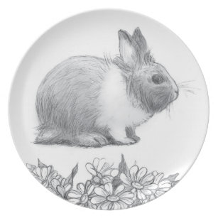 Pencil Drawing Plates Zazzle