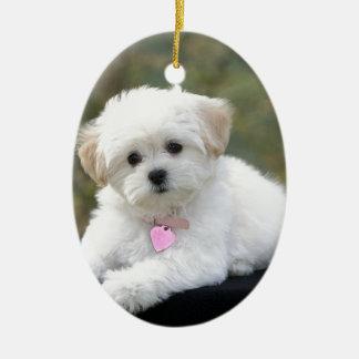 Fluffy White Dog Ceramic Ornament