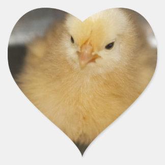 Fluffy Yellow Baby Chick Heart Sticker