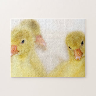 Fluffy Yellow Ducklings Jigsaw Puzzle