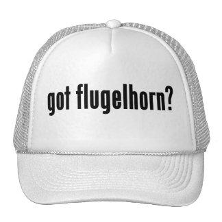 ¿flugelhorn conseguido? gorros