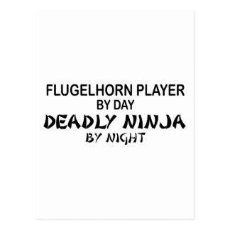 Flugelhorn Deadly Ninja by Night Post Card