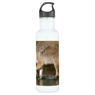 Fluid Motion Water Bottle