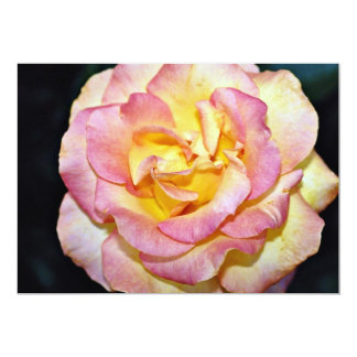 Flujo blanco color de rosa grandiflora de invitaciones personalizada