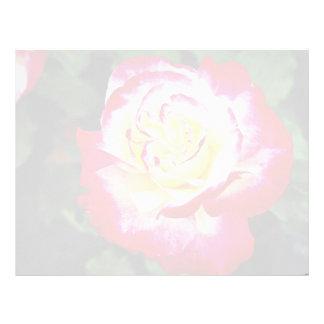 """Flujo blanco híbrido de """"Andeli"""" del rosa de té de Membrete"""