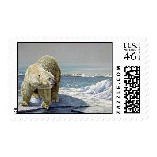 Flujo polar del hielo sellos