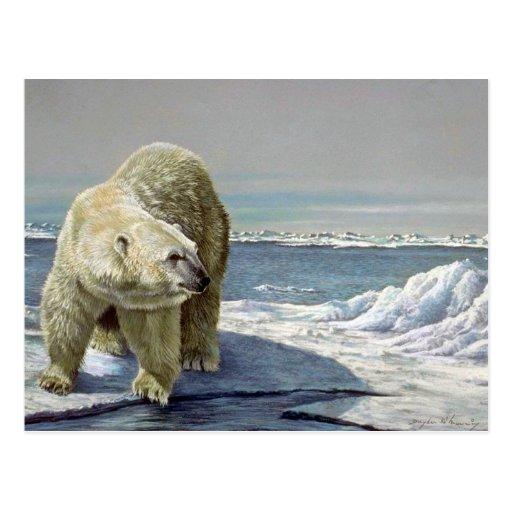 Flujo polar del hielo tarjeta postal