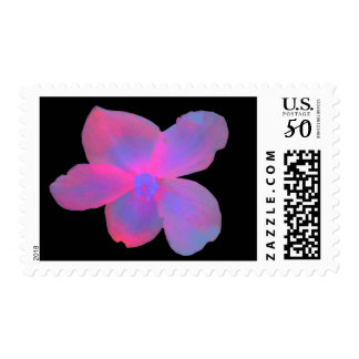 Fluorescent Begonia US Postage Stamp